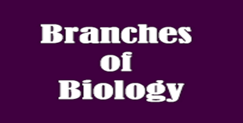 Branches of biology and MEANING OF BIOLOGY
