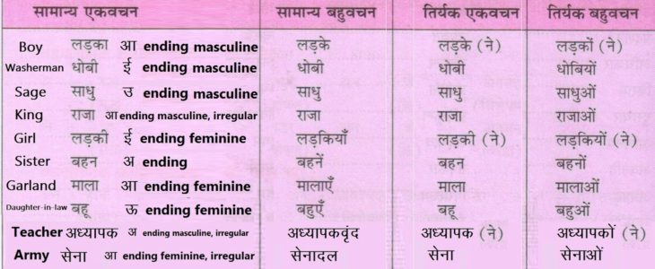 Vachan (Singular-Plural) (वचन) Related Important Study Material In Hindi Grammar