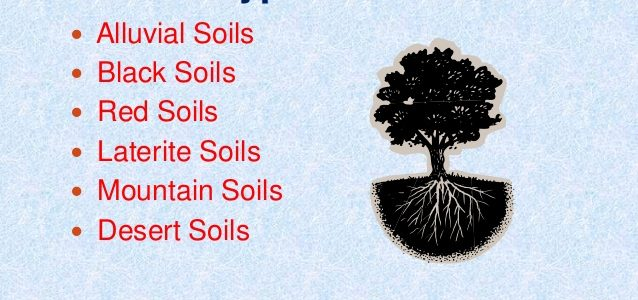 Short Tricks for Red soil region and Soil Resource and Vegetation of Rajasthan