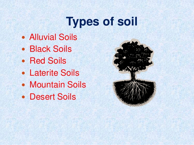 different-types-soil-in-rajasthan