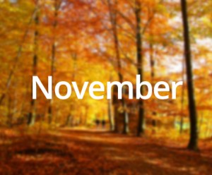 November Month Related important And famous Day and Date