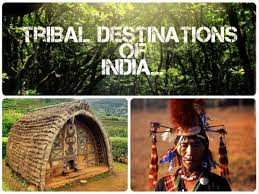 Important Information Regarding Primitive Tribes of India