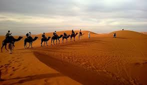 largest-sand-desert-in-the-world