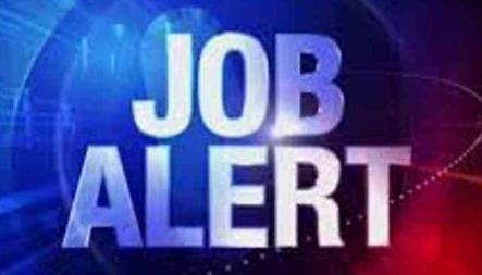 jobalert latest job